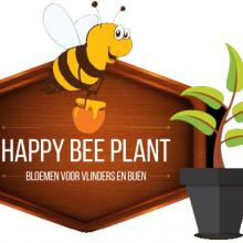 HAPPY BEE PLANT